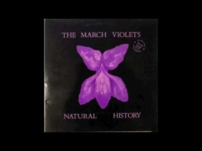 Pledgemusic with the March Violets: Mortality Tour and Album